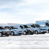 Vehículos profesionales Fiat