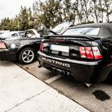 Dream Cars - Mustang rear