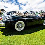 II Elegancia Tenerife - zaga Jaguar