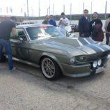 8000 Vueltas Experience - Mustang