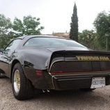 Pontiac Firebird Trans Am (1979-1981) - zaga