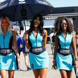 Paddock Girls Misano 2015 Leopard Racing