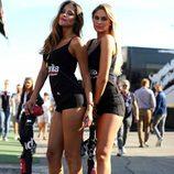 Paddock Girls Misano 2015  - Aprilia