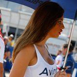 Paddock Girls Aragón 2015 - Azafata Avintia
