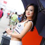 Paddock Girls del GP de Japón 2015 - Avintia perfil