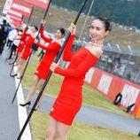 Paddock Girls del GP de Japón 2015 - Motul