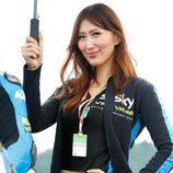 Paddock Girls del GP de Japón 2015 - VR46