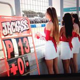 Paddock Girls del GP de Australia 2015 - Givi pit lane