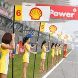 Paddock Girls del GP de Malasia 2015 - Modelo Shell pit lane