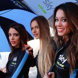 Paddock Girls del GP de Valencia 2015 - Sky VR 46
