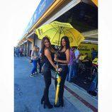 Paddock Girls del GP de Valencia 2015 - Chicas Páginas Amarillas