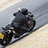 Gama Triumph Speed Triple 2016 - tumbada