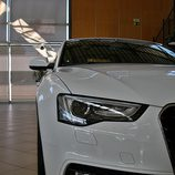 Audi A5 Sportback: Detalle frontal (I)
