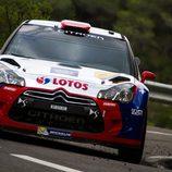 Robert Kubica, siguiente paso un WRC