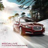 Felicitación navidad 2013 Jaguar