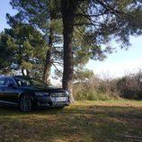 Audi a4 3.0 tdi - ruedas