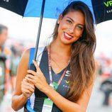 Paddock Girls GP Argentina 2016 - Azafata SKY VR46