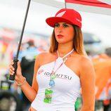 Paddock Girls GP Argentina 2016 - Idemitsu Honda
