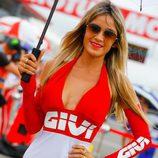 Paddock Girls GP Argentina 2016 - Azafata Givi