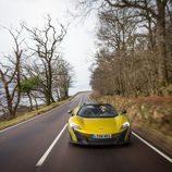 McLaren 675LT Spider 2016 - árbol