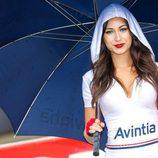 Paddock Girls GP Holanda 2016 - Avintia