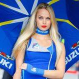 Paddock Girls GP Holanda 2016 - Suzuki Ecstar