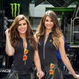 Paddock Girls del GP de Austria 2016 - monster girls