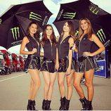 Paddock Girls del GP de Austria 2016 - 4 monster girls