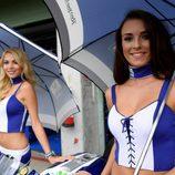 Paddock Girls del GP de la República Checa 2016 - Movistar Yamaha