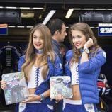 Paddock Girls del GP de Gran Bretaña 2016 - Movistar Yamaha