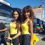 Paddock Girls del GP de Valencia 2016 - Páginas Amarillas