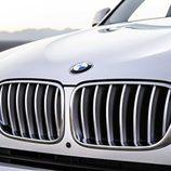 BMW X3: Calandra