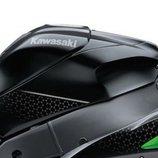 Kawasaki Ninja ZX-10R SE 2018