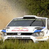 Primer plano del Polo R WRC