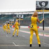 Muchas pit babes en Silverstone