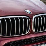 BMW X6 2014 - Calandra cromada