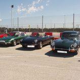 Alfa Romeo Spider y Jaguar E-Type