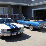 Colección Mustang