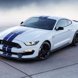 Ford Shelby Mustang GT 350 - back