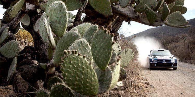 El Rally de México contará con una especial de 80 km