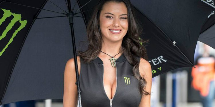 Paddock Girls del Gran Premio de Austria 2016