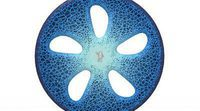 Michelin diseñó un neumático inteligente