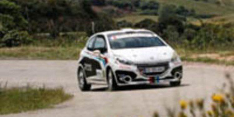 Renault y Peugeot optan a gestionar la WRC Academy