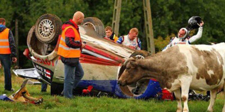 Robert Kubica empieza con accidente el Rally de Polonia