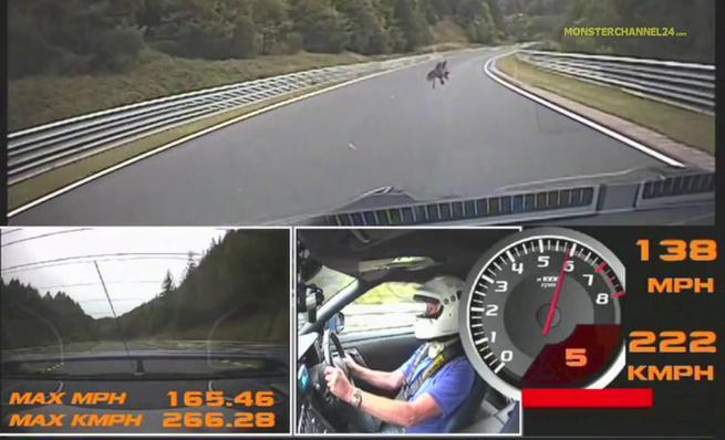 Vídeo 2: Nissan GTR contra águila