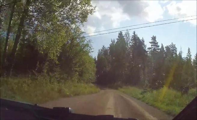 On board Lorenzo Bertelli - Accidente Rally de Finlandia 2014
