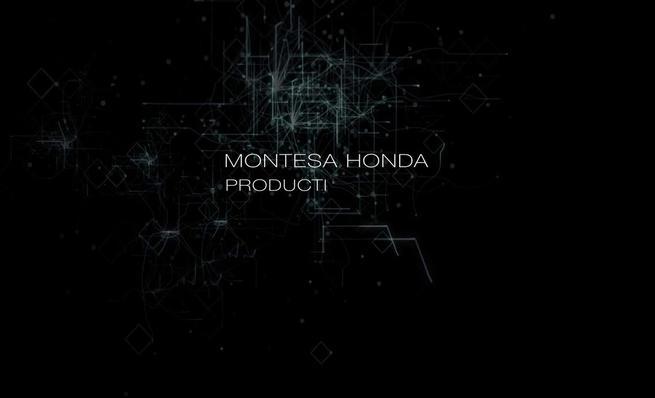 Vídeo teaser Montesa Cota RR